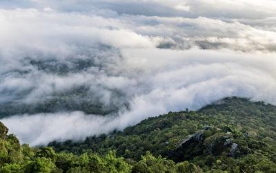 Migreren naar de public cloud. Hoe zie je door de wolken het bos?
